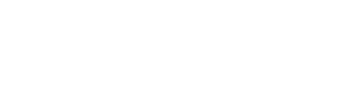 WV-Logo-White